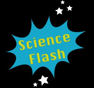 Logo Science Flash